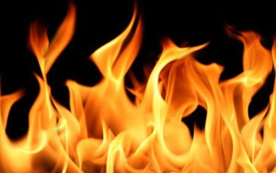 Den vackra elden, som här får symbolisera pitta, har jag lånat från Grinda.se.