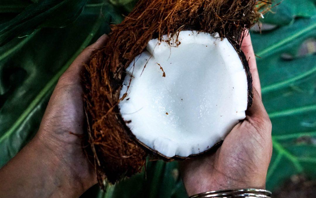 Gör din egen kokosmjölk – lätt som en plätt
