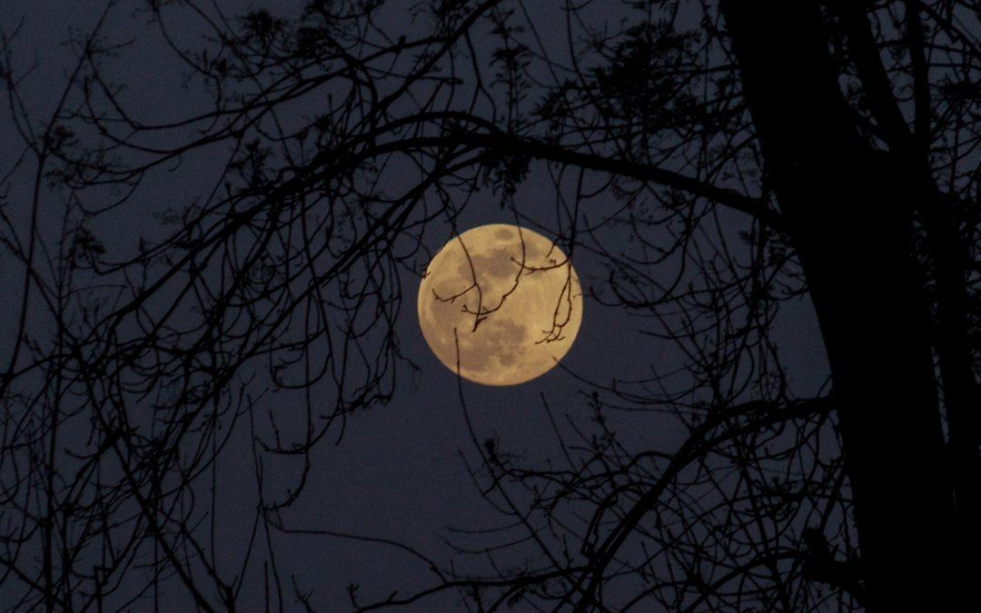 Veckans kundaliniyoga: Använd fullmånens energier!
