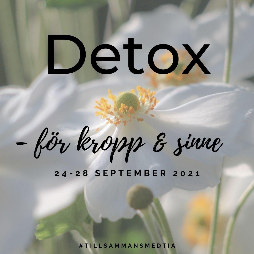Onlinekurs 24-28/9: Detox för kropp & sinne